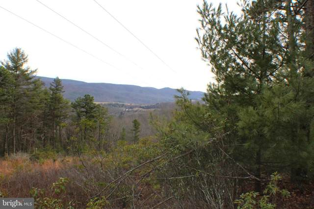 120.98 Ac Off Painter Road, FRANKLIN, WV 26807 (#WVPT101418) :: AJ Team Realty