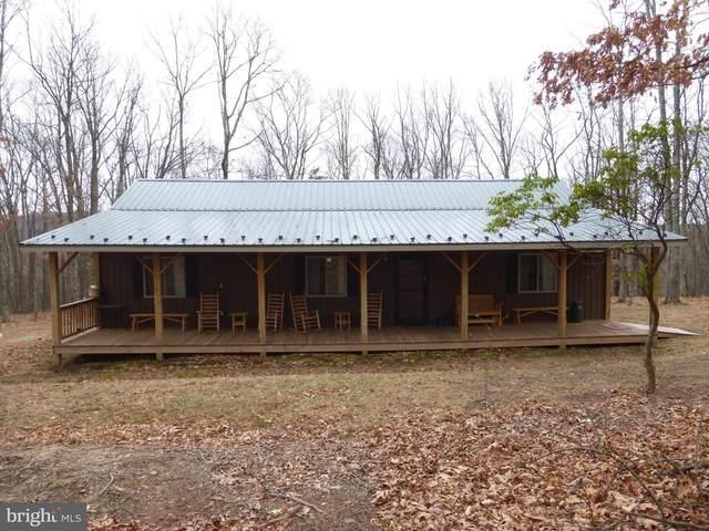 977 North Ridge Road, MATHIAS, WV 26812 (#WVHD105864) :: Dart Homes