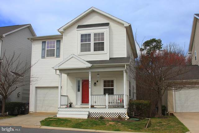 7528 Cove Point Way, ELKRIDGE, MD 21075 (#MDHW276896) :: The Miller Team