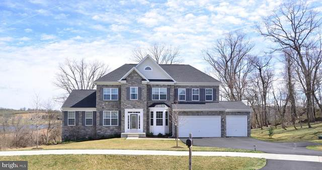 55 Stone Oak Place, ROUND HILL, VA 20141 (#VALO406132) :: The MD Home Team