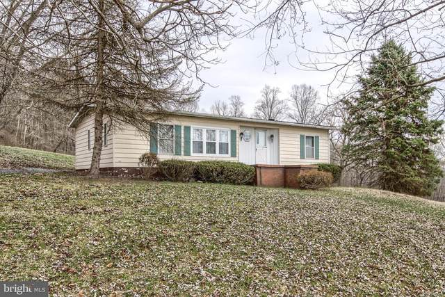 240 Mahanoy Valley Road, DUNCANNON, PA 17020 (#PAPY101966) :: The Joy Daniels Real Estate Group