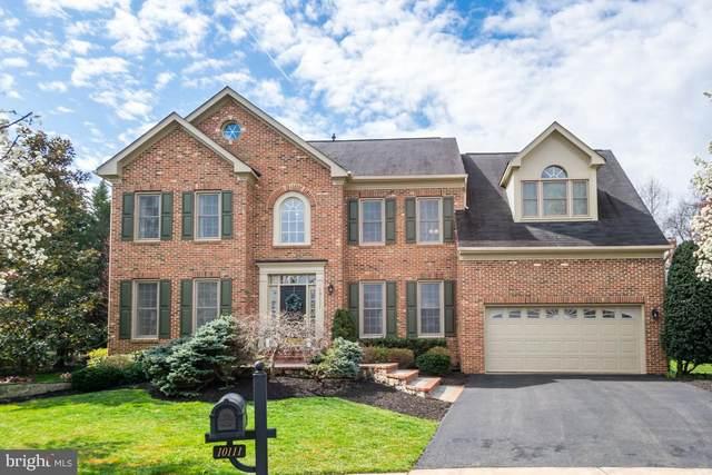 10111 Oakton Knoll Drive, OAKTON, VA 22124 (#VAFX1118190) :: Great Falls Great Homes