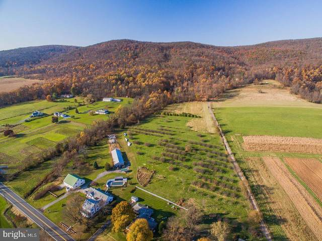 1150 S Mountain Road Lot 1, DILLSBURG, PA 17019 (#PAYK135578) :: The Heather Neidlinger Team With Berkshire Hathaway HomeServices Homesale Realty