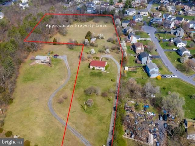 1081 Valley Mill Road, WINCHESTER, VA 22602 (#VAFV156428) :: Talbot Greenya Group