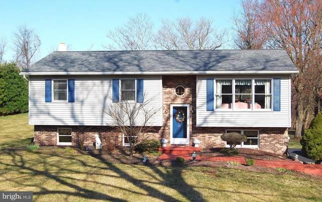 118 Oak Terrace Drive, BIRDSBORO, PA 19508 (#PABK356382) :: Ramus Realty Group