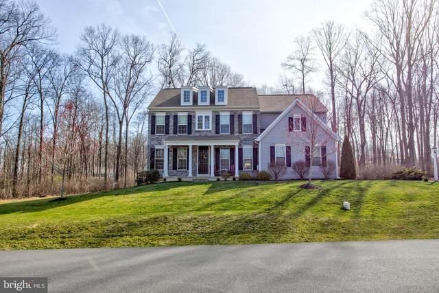 174 Crimson Lane, ELIZABETHTOWN, PA 17022 (#PALA161322) :: John Smith Real Estate Group