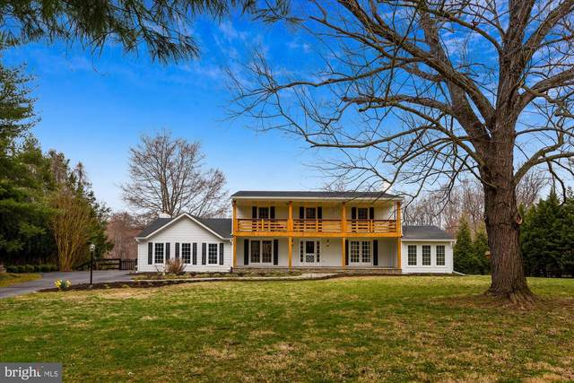 23353 Dover Road, MIDDLEBURG, VA 20117 (#VALO406562) :: EXP Realty