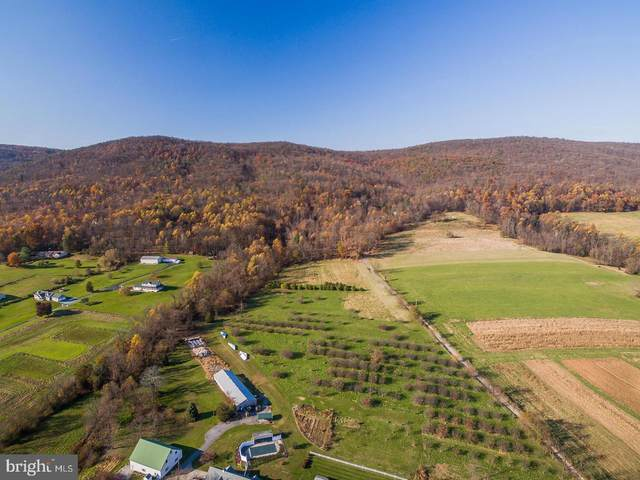 1150 S Mountain Road Lot 3, DILLSBURG, PA 17019 (#PAYK135640) :: The Heather Neidlinger Team With Berkshire Hathaway HomeServices Homesale Realty