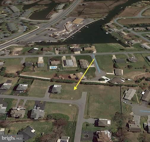 38033 Fenwick Shoals Boulevard, SELBYVILLE, DE 19975 (#DESU158434) :: RE/MAX Coast and Country