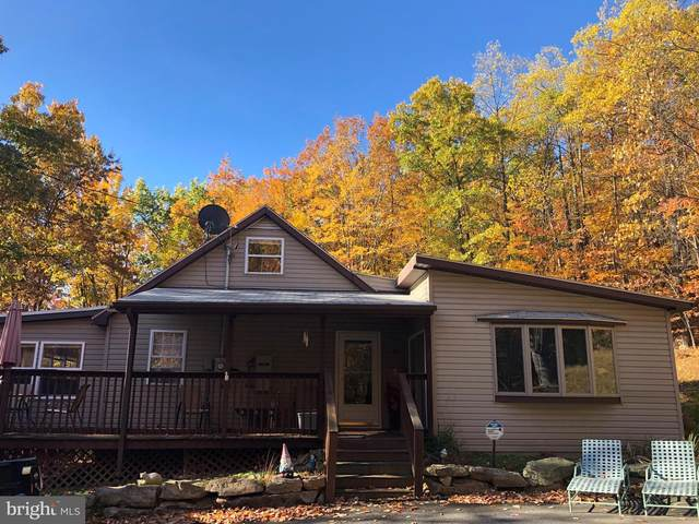 455 Roberts Lane, GREAT CACAPON, WV 25422 (#WVMO116674) :: Network Realty Group