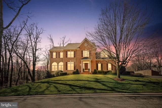 8033 N Park Street, DUNN LORING, VA 22027 (#VAFX1118772) :: Pearson Smith Realty
