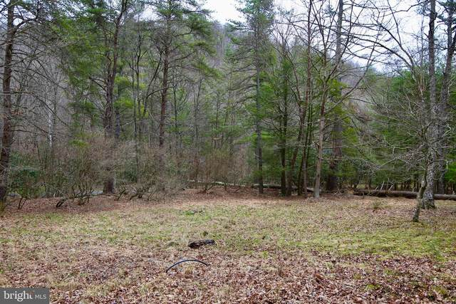 Whetzel Hollow, MATHIAS, WV 26812 (#WVHD105886) :: AJ Team Realty