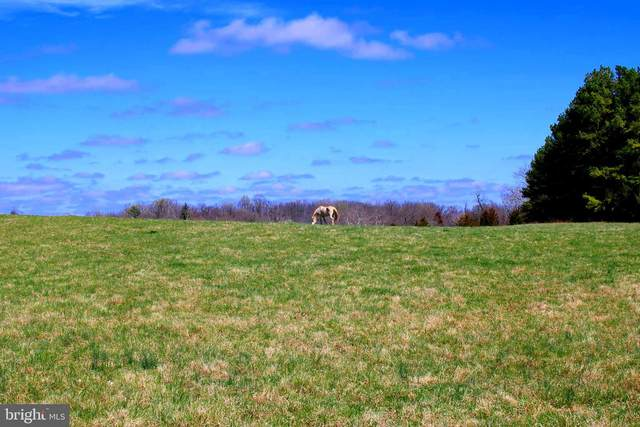 378 ACRES on Bishop Meade, BOYCE, VA 22620 (#VACL111290) :: Cristina Dougherty & Associates