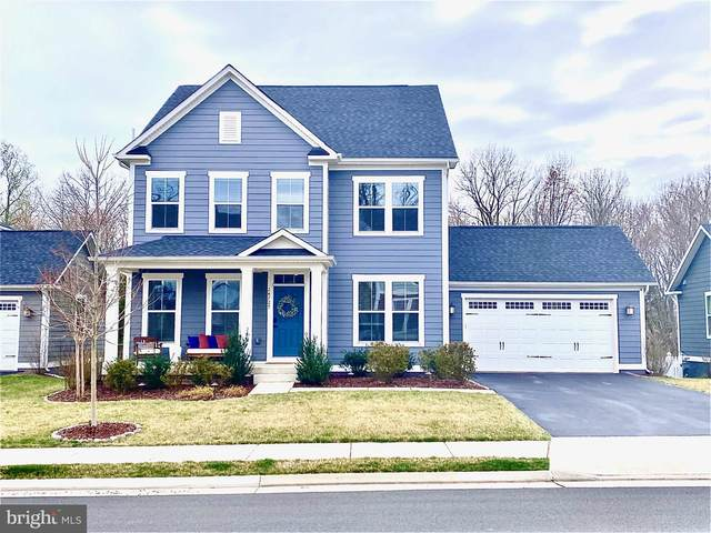 24727 Black Willow Drive, ALDIE, VA 20105 (#VALO406792) :: Tom & Cindy and Associates