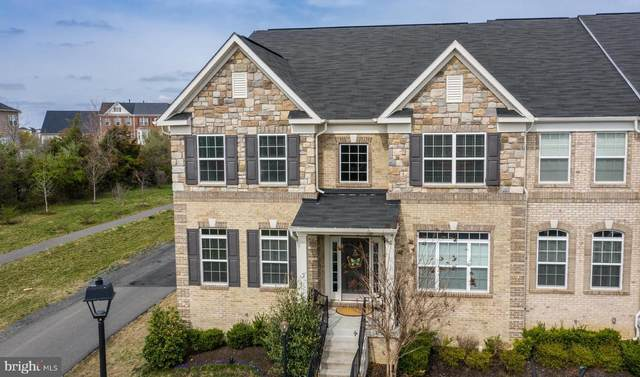 41692 Deer Grass Terrace, ALDIE, VA 20105 (#VALO406816) :: The Greg Wells Team