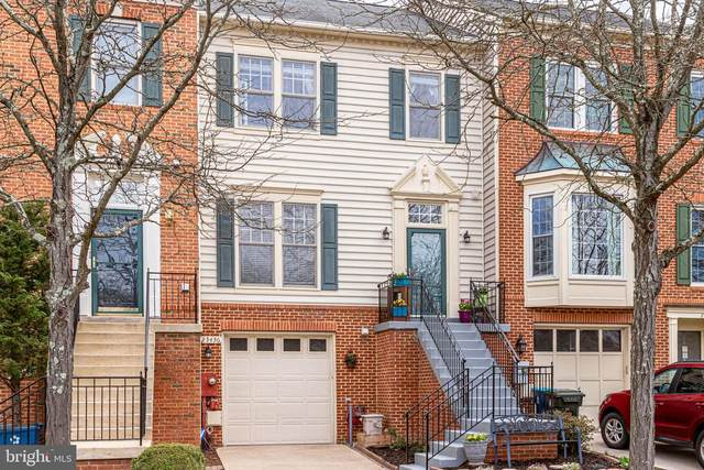 25436 Herring Creek Drive, CHANTILLY, VA 20152 (#VALO406844) :: EXP Realty