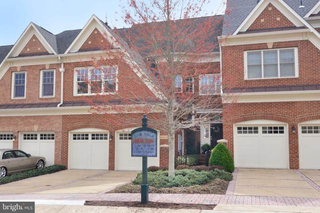 43663 Palmetto Dunes Terrace, LEESBURG, VA 20176 (#VALO406846) :: Tom & Cindy and Associates
