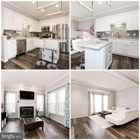 26110 Lands End Drive, CHANTILLY, VA 20152 (#VALO406902) :: Network Realty Group
