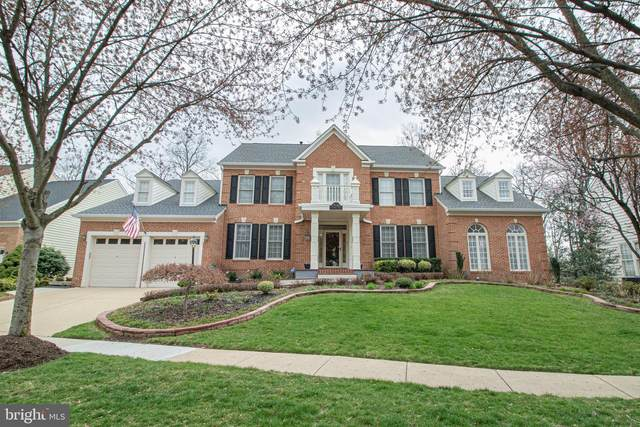 25282 Kennebec Drive, CHANTILLY, VA 20152 (#VALO406910) :: Network Realty Group