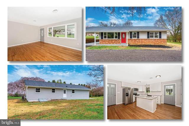 8846 Mapleville Road, MOUNT AIRY, MD 21771 (#MDFR261836) :: Revol Real Estate