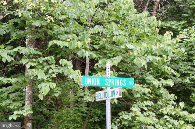 0 SHELL HOLLOW LN, DAYTON, VA 22821 (#VARO101128) :: Dart Homes