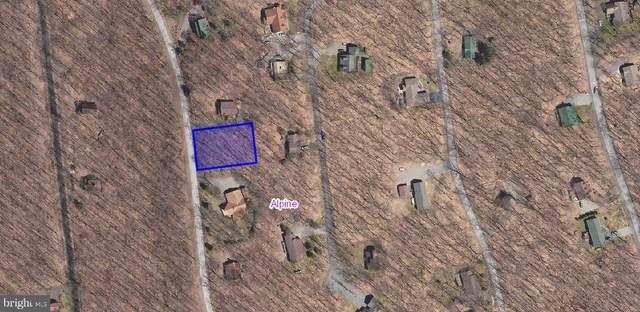 37 Primrose, TERRA ALTA, WV 26764 (#WVPR103924) :: AJ Team Realty
