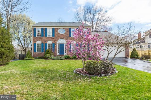 6402 Springhouse Circle, CLIFTON, VA 20124 (#VAFX1119408) :: Bruce & Tanya and Associates