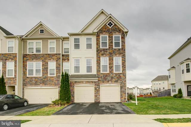 25155 Himalayas Terrace, ALDIE, VA 20105 (#VALO406962) :: The Vashist Group