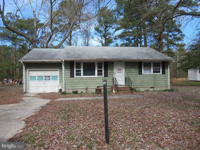 23550 Deal Island Road, DEAL ISLAND, MD 21821 (#MDSO103368) :: RE/MAX Coast and Country