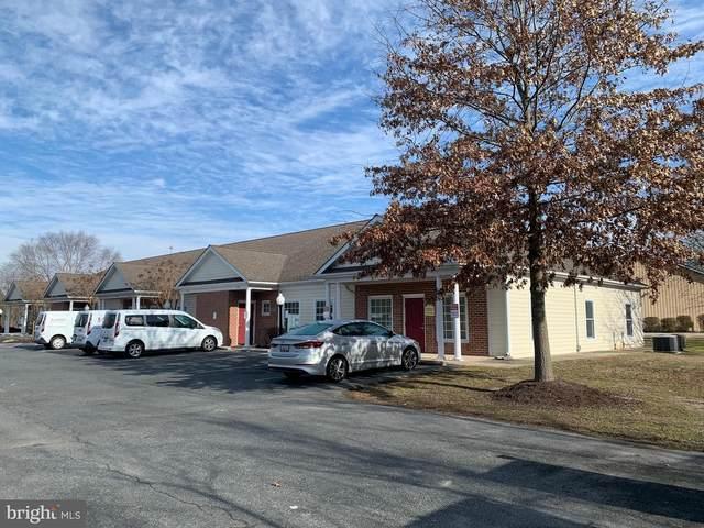29509 Canvasback Drive, EASTON, MD 21601 (#MDTA137796) :: Dart Homes