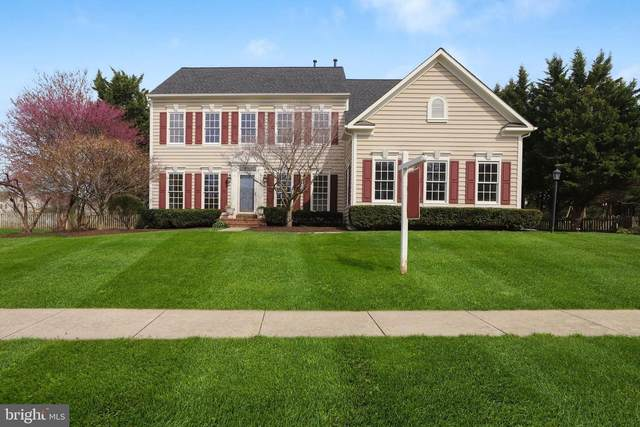 43312 Burke Dale Street, CHANTILLY, VA 20152 (#VALO407012) :: Revol Real Estate