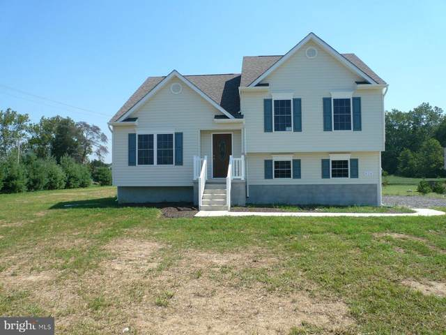 Cooper Court, CENTREVILLE, MD 21617 (#MDQA143450) :: The Redux Group