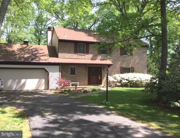 211 Birch Run Road, CHESTERTOWN, MD 21620 (#MDKE116400) :: Bruce & Tanya and Associates