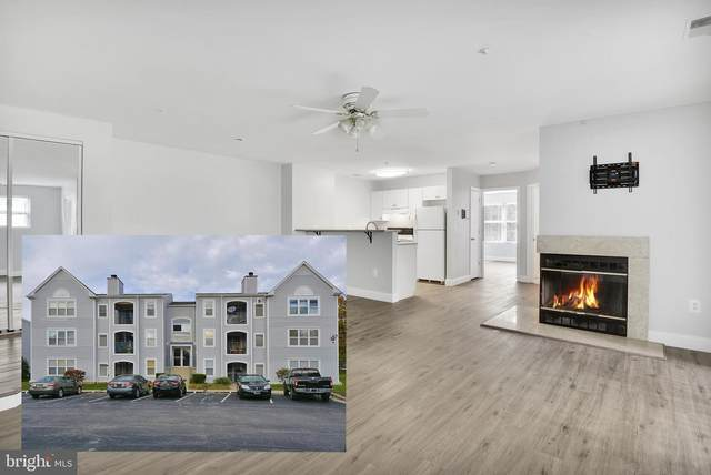 10 Greystone Court B, ANNAPOLIS, MD 21403 (#MDAA429926) :: The Sky Group