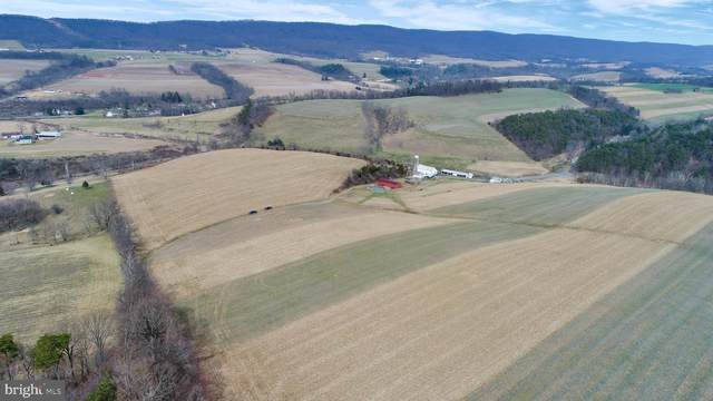 Lot 2 Slutter Valley Road, DORNSIFE, PA 17823 (#PANU101130) :: TeamPete Realty Services, Inc