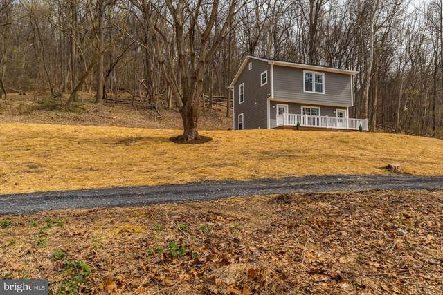 939 Doom Peak Road, LINDEN, VA 22642 (#VAWR139796) :: Erik Hoferer & Associates
