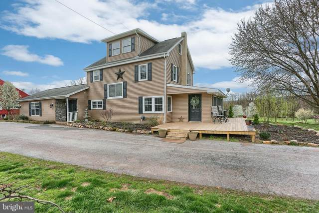 305 Shady Lane, MIDDLETOWN, PA 17057 (#PADA120490) :: The Joy Daniels Real Estate Group