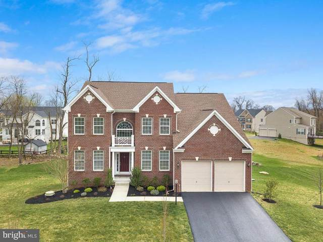 13 Ramsdell Court, ROUND HILL, VA 20141 (#VALO407144) :: The Greg Wells Team