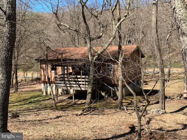 36 Timber Hollow Lane, LOST RIVER, WV 26810 (#WVHD105898) :: Larson Fine Properties