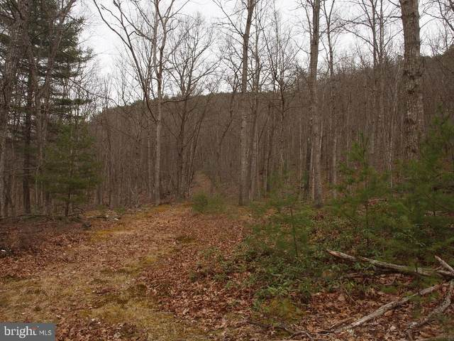 Rt 33 W- Friends Run/Judy Mountain, FRANKLIN, WV 26807 (#WVPT101442) :: AJ Team Realty