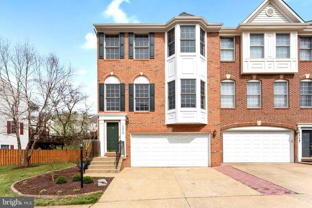 20946 Cherokee Terrace, STERLING, VA 20165 (#VALO407176) :: The MD Home Team