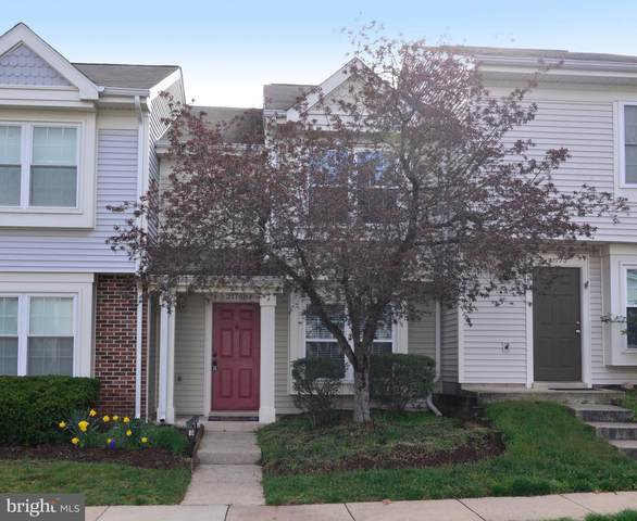 21768 Canopy Terrace, STERLING, VA 20164 (#VALO407198) :: Network Realty Group