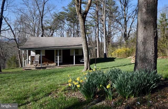 203 Lake Drive, EDINBURG, VA 22824 (#VASH118848) :: The Riffle Group of Keller Williams Select Realtors