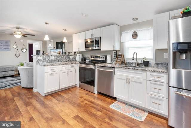 9 Hammock Trail, MIDDLE RIVER, MD 21220 (#MDBC490072) :: The Dailey Group
