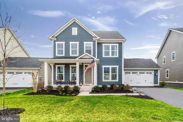 24703 Black Willow Drive, ALDIE, VA 20105 (#VALO407262) :: The MD Home Team