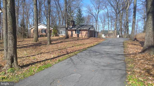 133 Pleasant Drive, MYERSTOWN, PA 17067 (#PALN113378) :: Iron Valley Real Estate