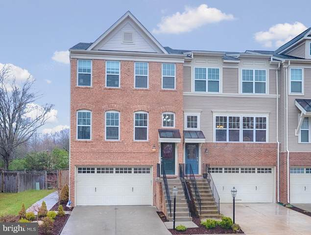 43450 Hopestone Terrace, CHANTILLY, VA 20152 (#VALO407306) :: Revol Real Estate