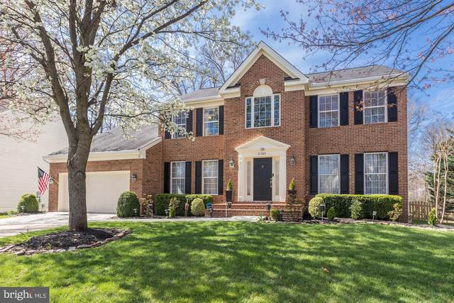21380 Clappertown Drive, ASHBURN, VA 20147 (#VALO407312) :: Tom & Cindy and Associates