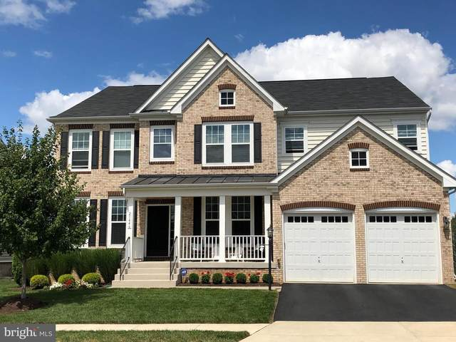 23446 Lofthill Drive, BRAMBLETON, VA 20148 (#VALO407316) :: Jacobs & Co. Real Estate
