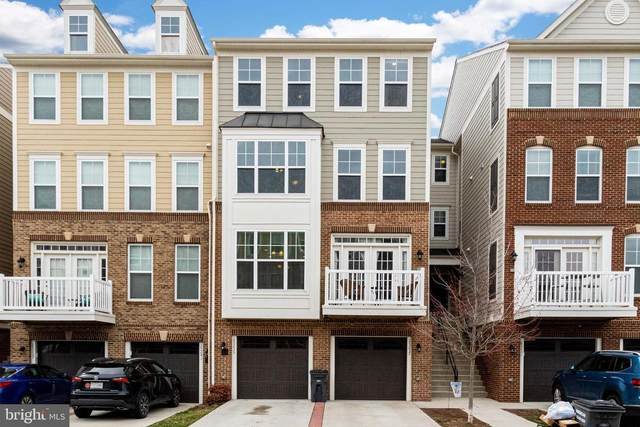 25237 Orchard View Terrace, CHANTILLY, VA 20152 (#VALO407322) :: EXP Realty